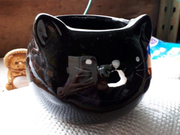 旦那がDIYしたカエルの噴水が壊れたので、猫の噴水に作り替えてみた
