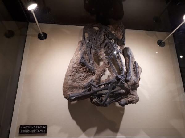 【丹波竜化石工房ちーたんの館】に行ってきた