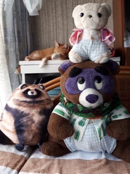 タヌキとシロクマとフェリシモのタヌキ